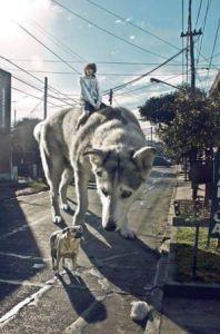 Foto Editan Photoshop Terbaik di Dunia (14)